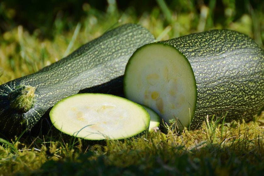 zucchine_new